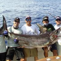 World Sailfish Tournament