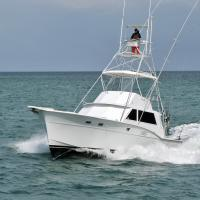 Best Miami Fishing Charters