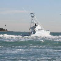 Coconut Grove 10 Best Miami Fishing Charters