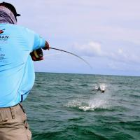 PERMIT Fishing Charters